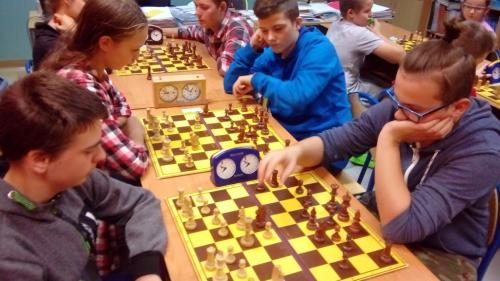 chess sp (10)
