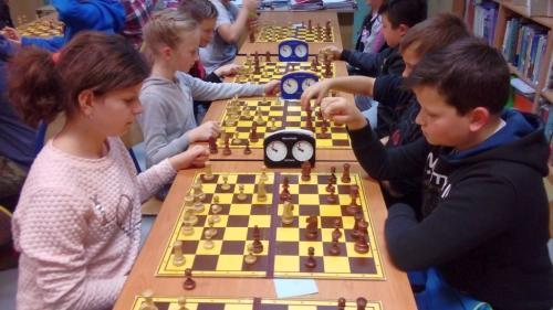 chess sp (12)