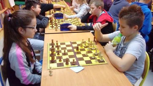 chess sp (7)